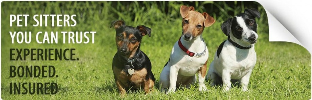 About our service Pet Sitting and Dog Walking at House Calls Pet Sitting - housecalls4pet.com